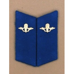 Collar tabs of Airborn (VDV) for ordinary uniforms, with tabs