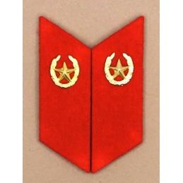 Patki do powszednich mundurów Piechoty Zmotoryzowanej z korpusówkami