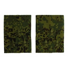 Epaulets for colonel, camouflage