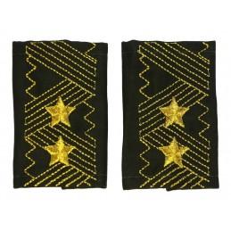 Pagony generała-lejtnanta, Oliwkowe