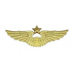 Odznaka lotnicza na czapkę, wsółczesna