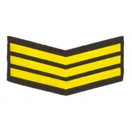 Naszywka dla żołnierzy zawodowych - 2 lata służby, zielona