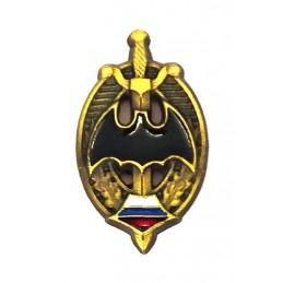 """Znaczek-miniaturka - odznaka pamiątkowa """"Weteran Spcenazu"""""""