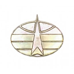 "Branch insignia (modern), ""Space Forces"" - field"