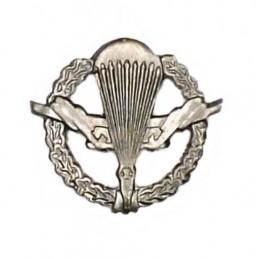 Brach insignia, field, VDV (Airborne)