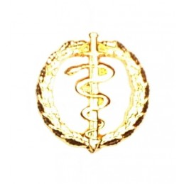 """Anti-narcotics control"" branch insignia - gold"