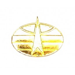 """Space Forces"" branch insignia, new model, gold"