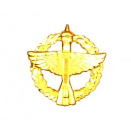 """Space Forces"" branch insignia, modern, gold"