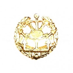 """Engineer Corps"" - branch insignia, modern, gold"