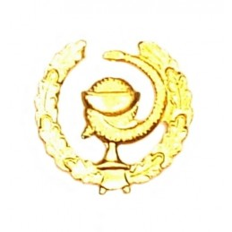 """Medical Services"" branch insignia, right, gold"