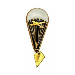 """Parachutist"" insignia - new model, with airplane"