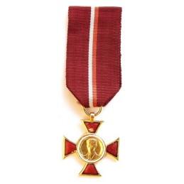 """Medal """"Janek Krasicki"""" - Gold"""