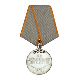 "Medal ""For Merit in Battle"""
