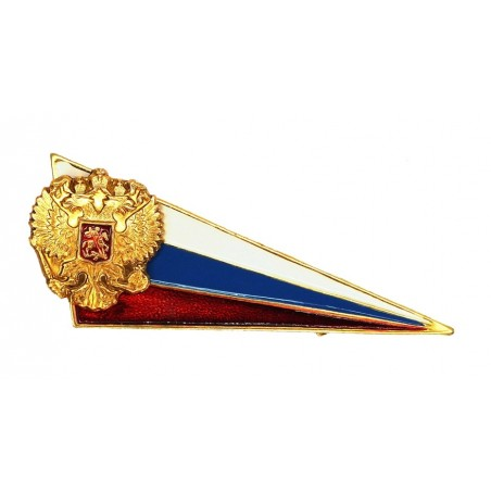 Metal chevron with flag & eagle, for beret