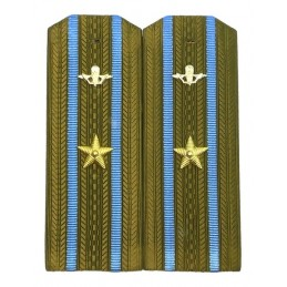 Epaulettes for shirt of the...