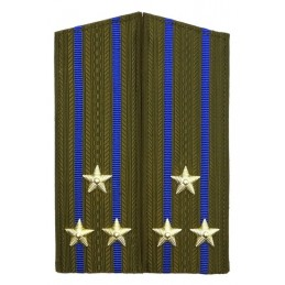 Epaulettes for uniform of the colonel of KGB