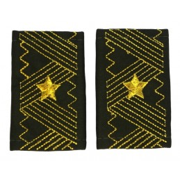 Epaulets of general-major,...