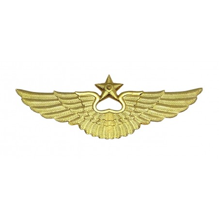 Aviation badge for the cap, modern