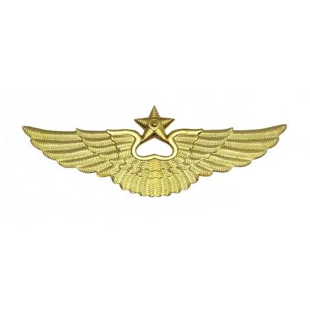 Odznaka lotnicza na czapkę, współczesna