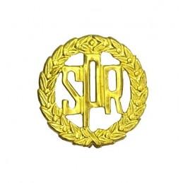 School Ensign of Reserve of Navy - graduates badge