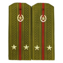 Epaulettes for shirt of the lieutenant of Internal Forces