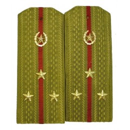 Epaulettes for shirt of the senior lieutenant of Internal Forces