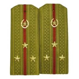 Pagony do koszuli starszego porucznika Wojsk Wewnętrznych