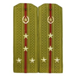 Epaulettes for shirt of the captain of Internal Forces