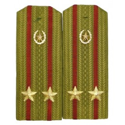 Epaulettes for shirt of the junior colonel of Internal Forces