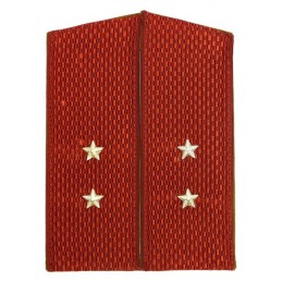 Epaulettes of the ensign of Internal Forces