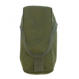 TI-P-2AS-00 Pouch for 2 VSS/AS Val/M4/M16 rifle magazines, OLIVE