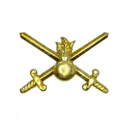 """Ground Forces"" branch insignia, gold"