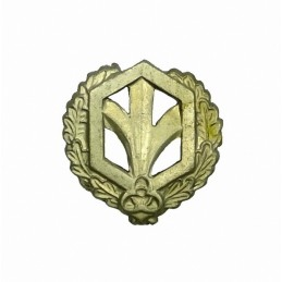 """Chemical Troops"" branch insignia, field"
