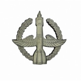 """Space Forces"" branch insignia, modern, field"