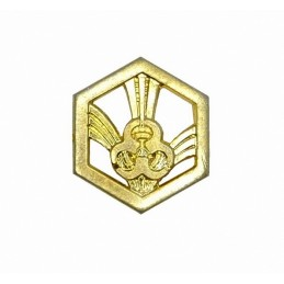"""Chemical Troops"" branch insignia, gold"