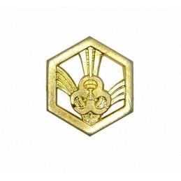 """Korpusówka """"Wojska Chemiczne"""", złota"""