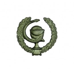 """Medical Service"" branch insignia, field, right"