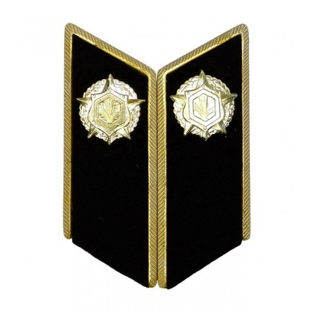 Collar tabs of Chemical Troops for official uniforms with tabs