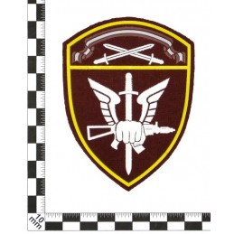 """""""Spetsnaz of Rosgvardia North-Western MD"""" patch"""