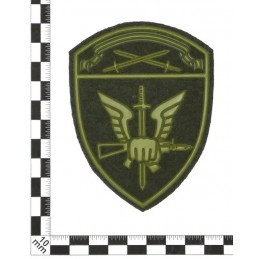"""""""Spetsnaz of Rosgvardia North-Western MD"""" patch, slaked"""