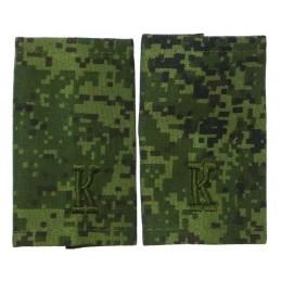 Epaulets for cadet,...