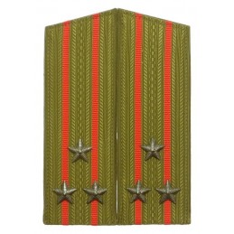 Epaulettes of the colonel...