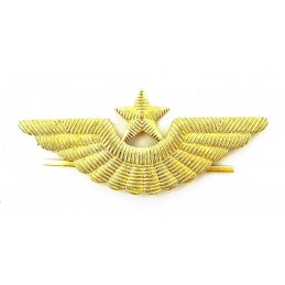 Aviation badge for the cap