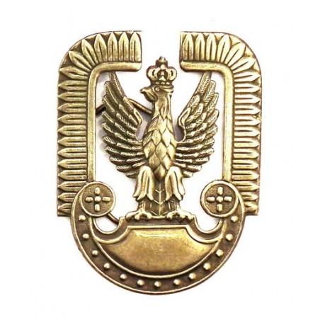 Orzełek współczesny - Wojska Lotnicze