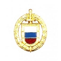 """Korpusówka """"FSO"""", z kolorową flagą - złota"""