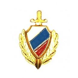 """Korpusówka """"MWD"""" - współczesna z flagą, złota"""