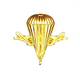"""VDV"" (Airborne) branch insignia, new model, gold"