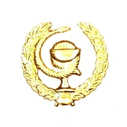 """Medical Services"" branch insignia, left, gold"