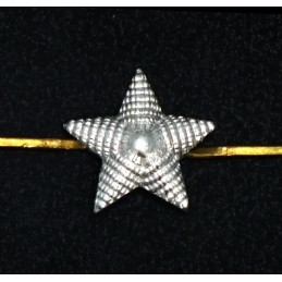 Small stars on the epaulets, junior and non-commissioned officers, silver