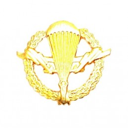 """Korpusówka """"WDW"""" - złota"""